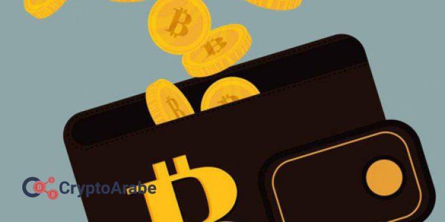 محافظ العملات الرقمية المشفرة