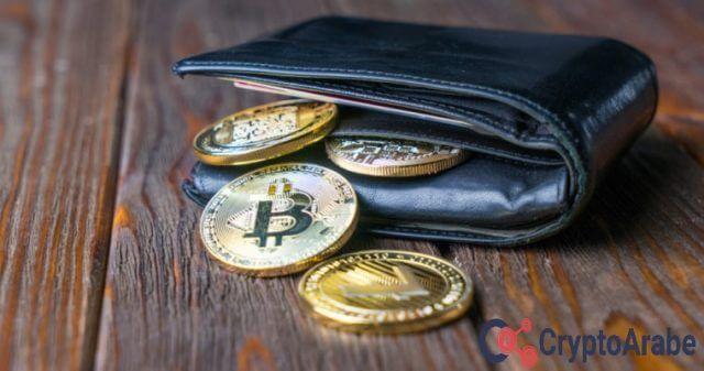لهيكلة خدمات محفظة العملات الرقمية