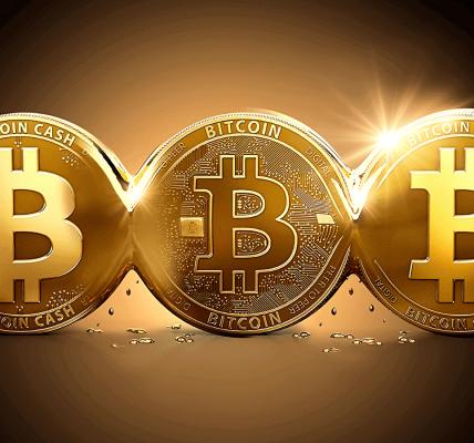 العملة المشفرة بيتكوين
