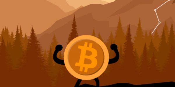 توقعات Bitcoin الأسبوعية
