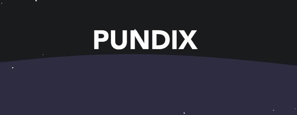 عملة PUNDIX