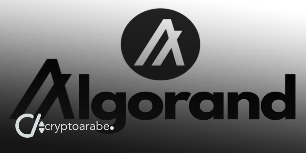 كل التفاصيل وتداول العملة المشفرة ALGO و بلوكشين Algorand
